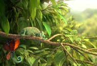 Our Wonderful Nature - The Common Chameleon, Tomer Eshed, LIAF, London International Animation Festival