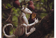 LIAF, London International Animation Festival, Winter in the Rainforest, Anu-Laura Tuttelberg